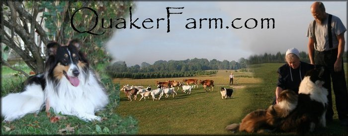 Quaker Farm, Michigan, sustainable living, homesteading